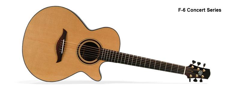 f6-polaroid-large-01-Guitar-Luthier-LuthierDB-Image-1