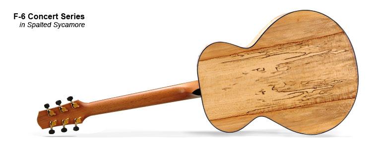f6-polaroid-large-02-Guitar-Luthier-LuthierDB-Image-10